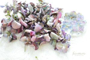 紫陽花の石鹸